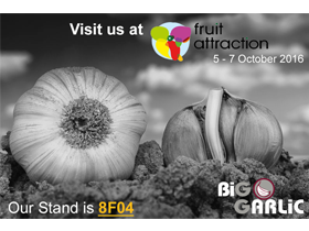 FRUIT ATTRACTION 2016